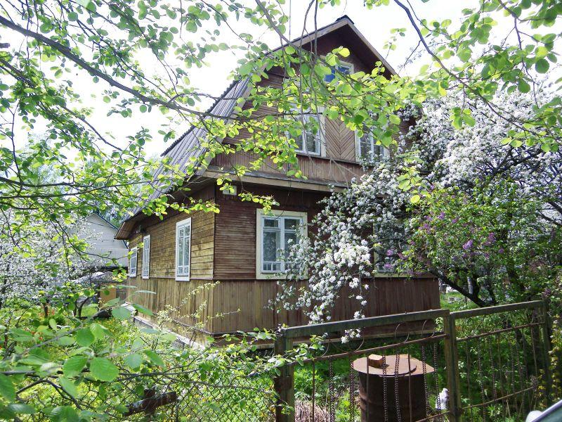 Как выбрать дачу в Ленинградской области