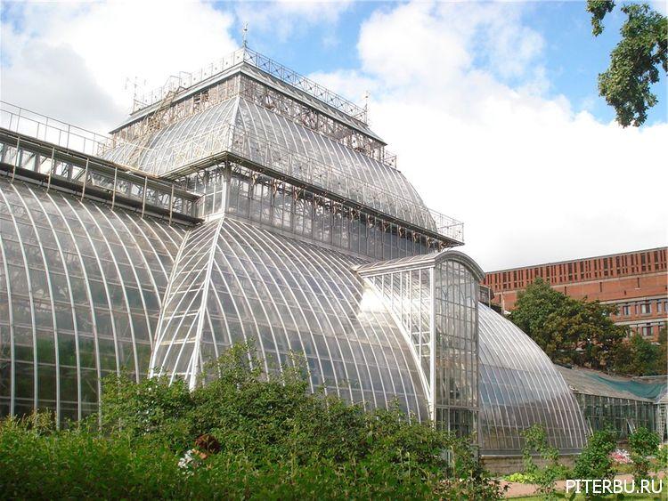 Экскурсия по Петербургу №7: Аптекарский остров, Ботанический сад