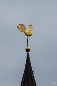 Флюгер «Золотой петушок» в Петербурге на Пушкинской ул.